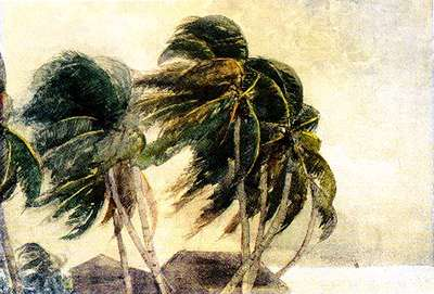 Image: A painting of palm trees