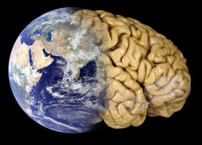 A graphic of the earth merging into a human brain